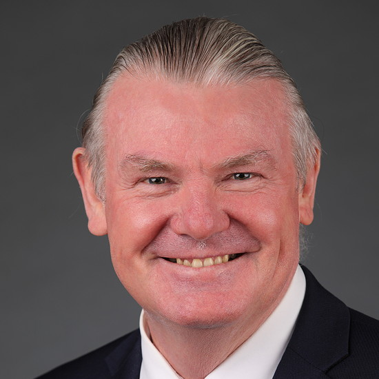 Image of The Hon. Shaun  Leane (President of the Legislative Council)