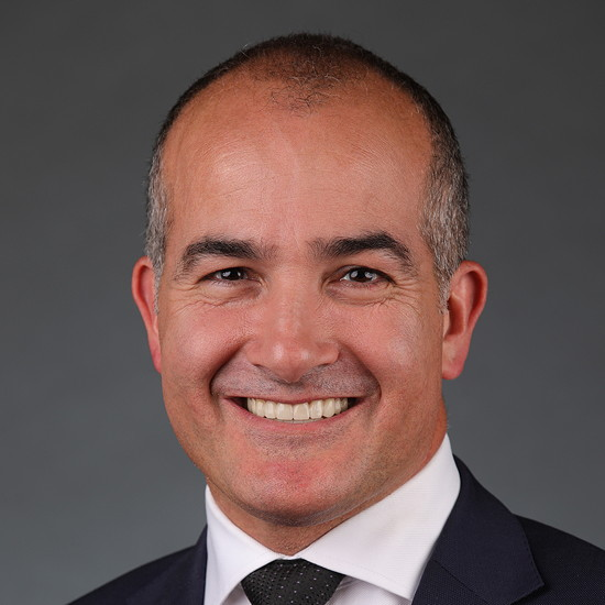 Image of The Hon. James Merlino