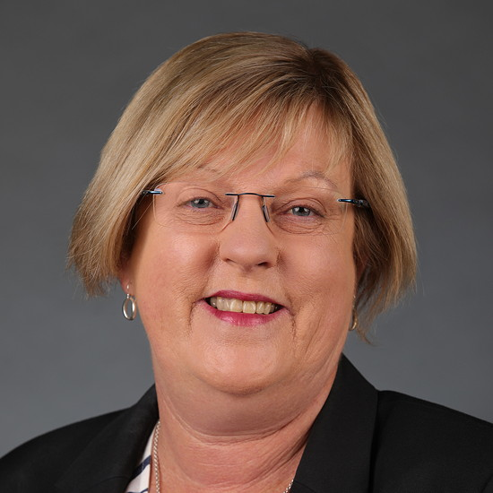 Image of The Hon. Lisa Neville